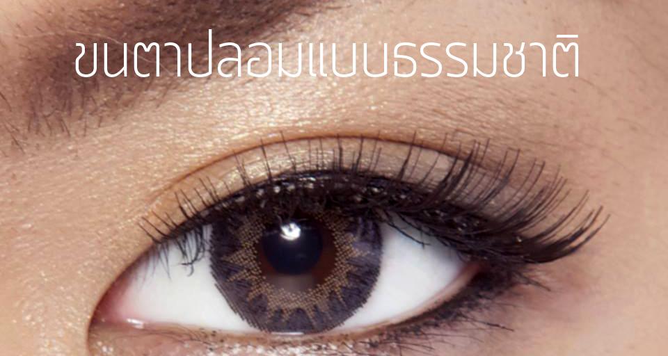 Makeup Tips มาทำความรู้จักกับขนตาปลอมกันดีกว่า 1