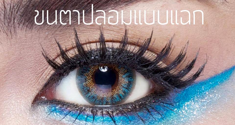 Makeup Tips มาทำความรู้จักกับขนตาปลอมกันดีกว่า 2