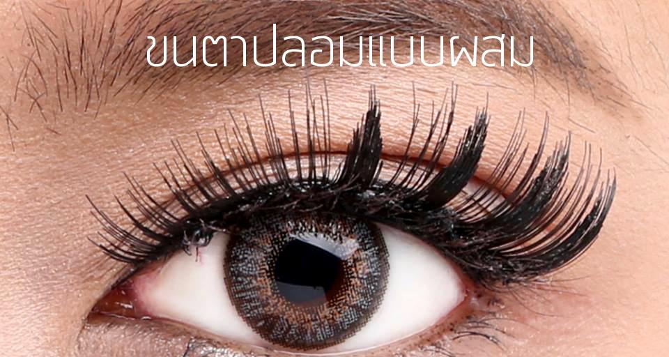 Makeup Tips มาทำความรู้จักกับขนตาปลอมกันดีกว่า 4