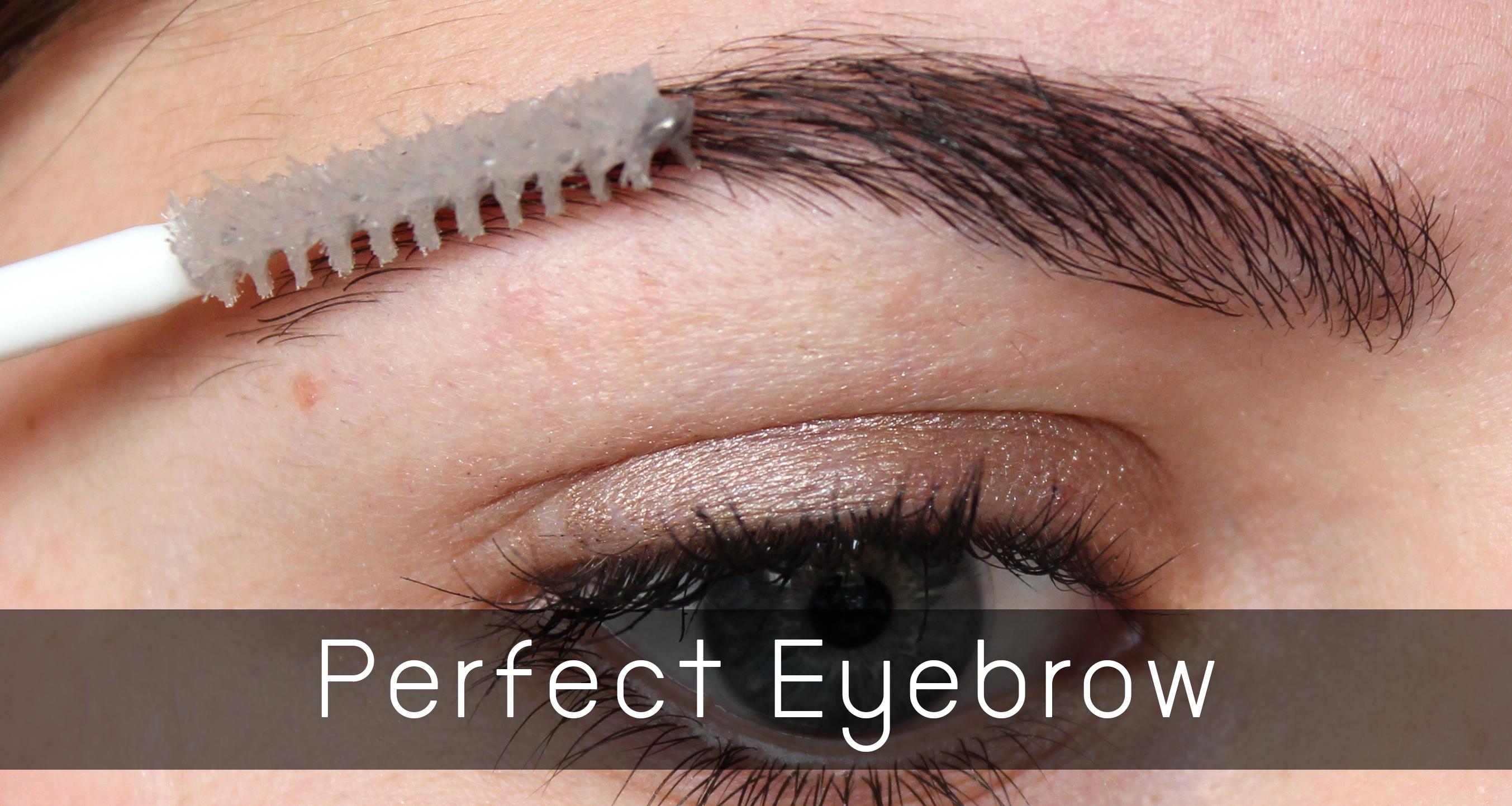 Perfect Brow HEAD